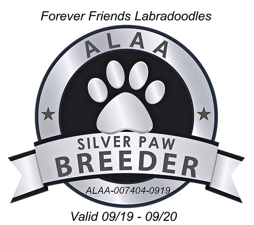 Forever%20Friends%20ALAA%20Silver%20Paw%20Logo%20Master2019_edited.png