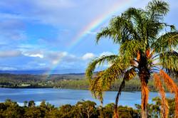 Rainbow at Norfolk Pine