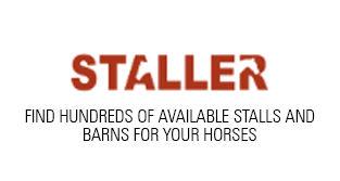 staller_web.jpg