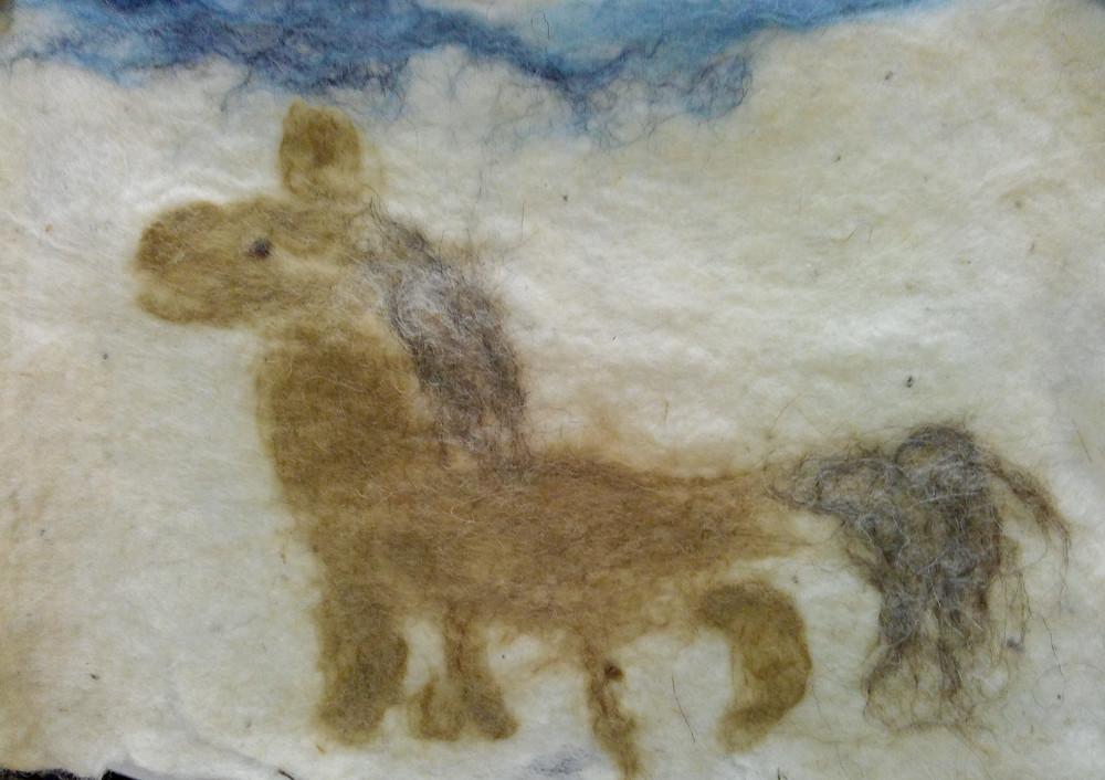Лошадка Элис (8 лет)