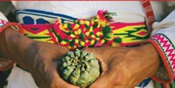 Teachings of the Peyote Shamans