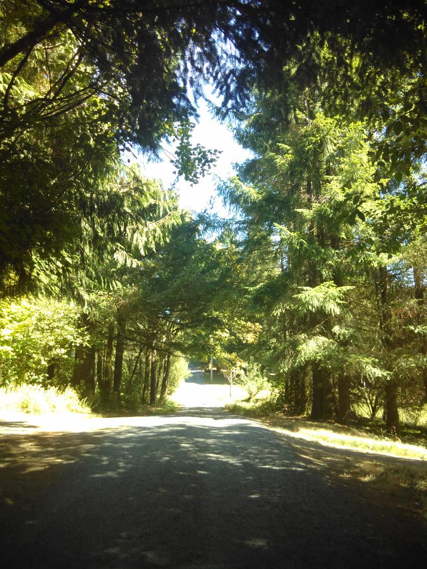 Wildwood Nature School - Portland, Oregon, USA
