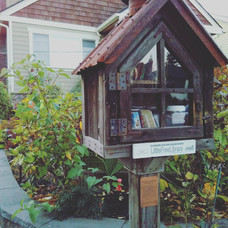 The cutest free library!
