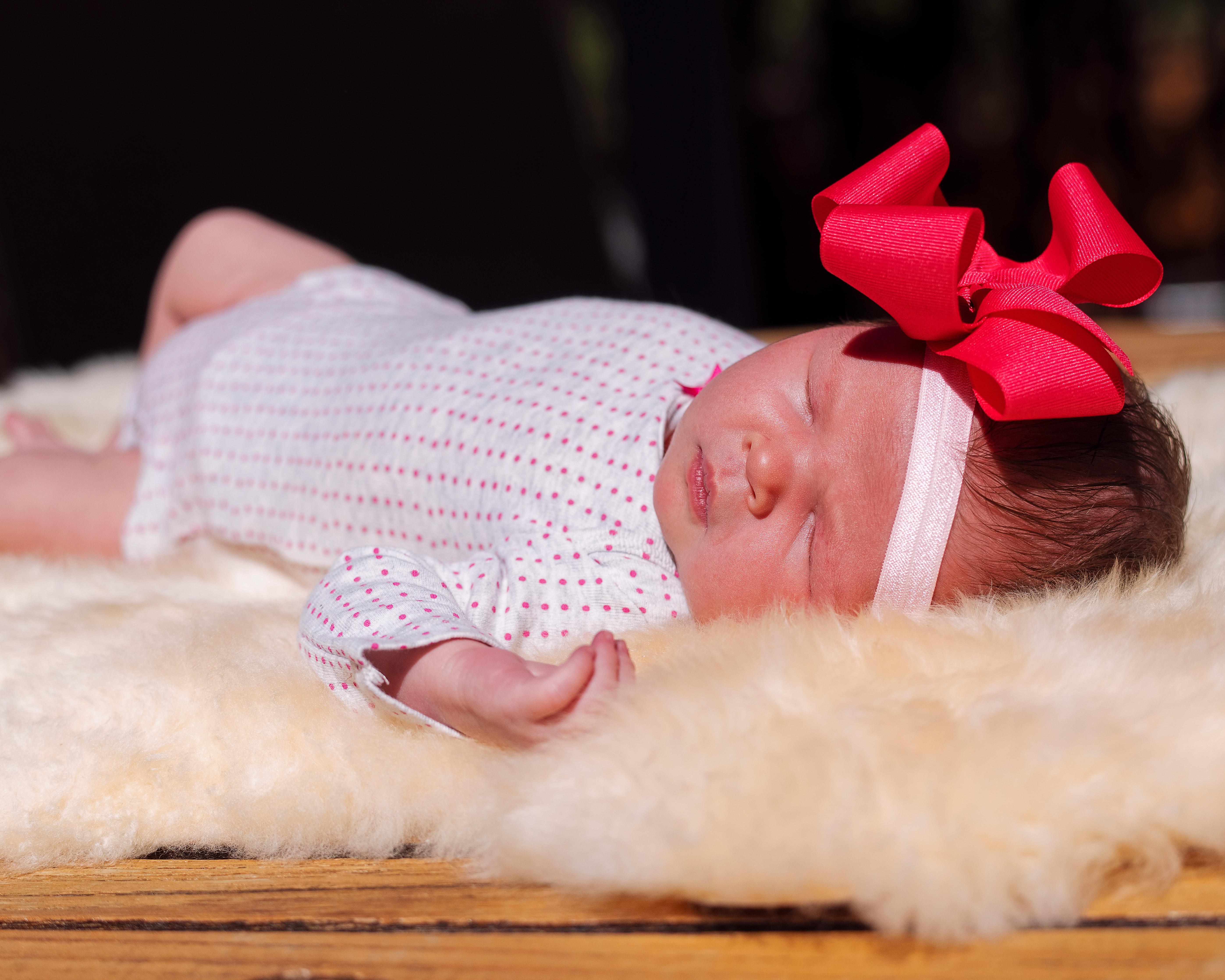 Newborn Photoday