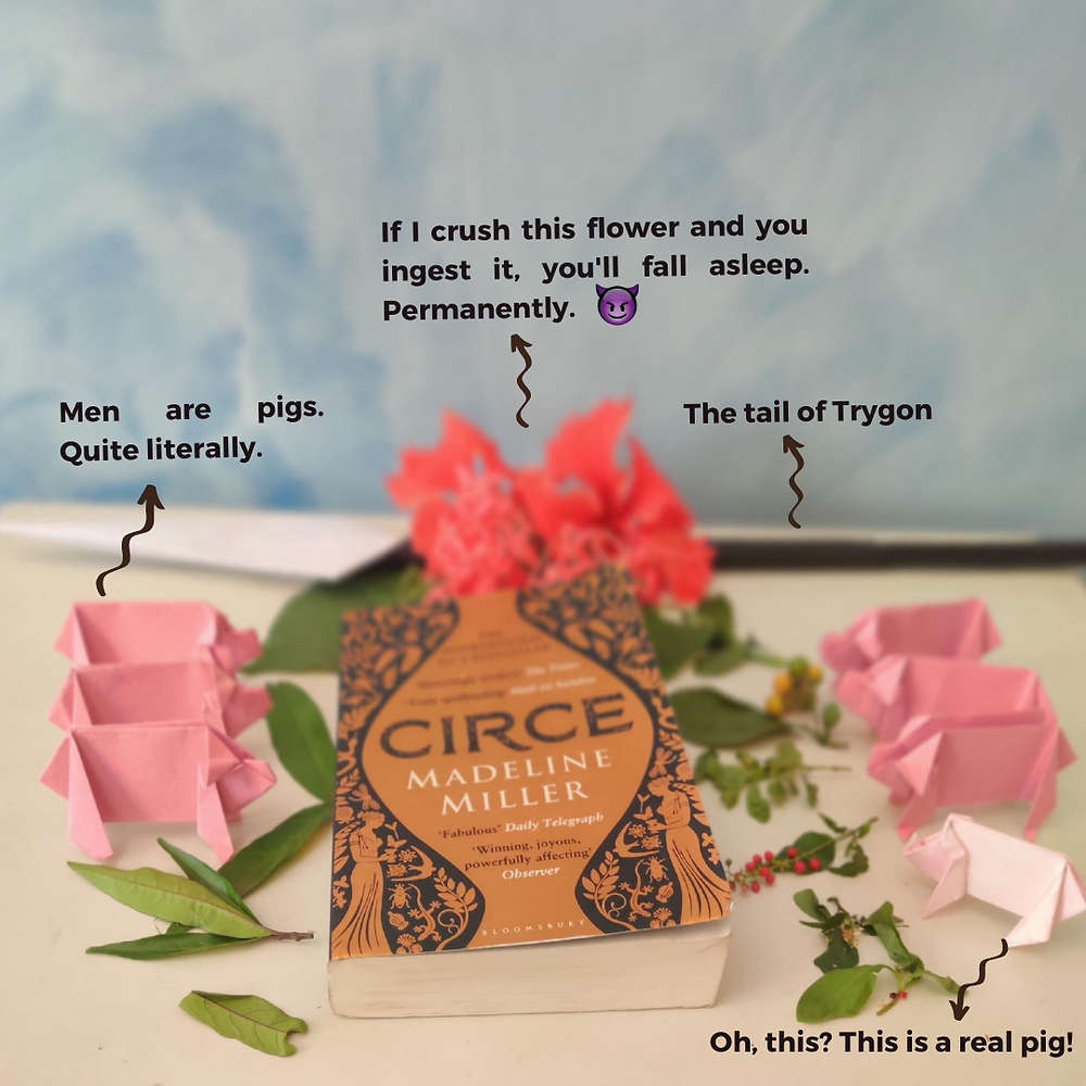 The book, Circe, kept on a cream-coloured surface. On both sides are several origami pigs. Scattered around are leaves and a few flowers. At the back is a spear (Trygon's tail)