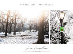 Page 27 - NEW YORKBDNBC.jpg