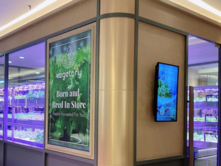 Vegetory The First In-Store Farm in Malaysia