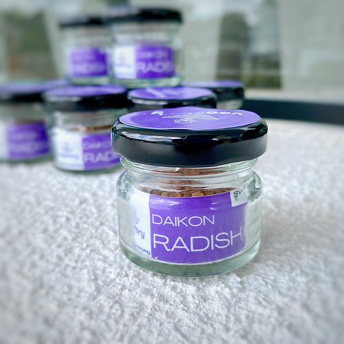 Rambo Radish Microgreen Seed Jar