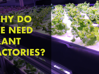 Why Do We Need Plant Factories?