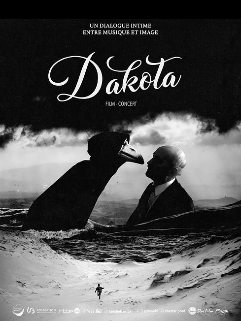 Affiche def spectacle Dakota novembre 20