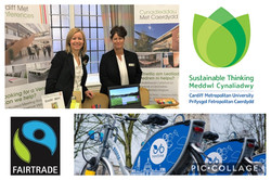 C Met Public Health Wales Collage