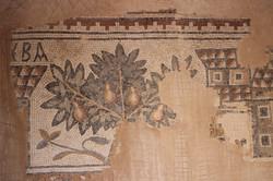 Mosaics From Madaba