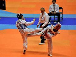 Taekwondo Nice Elite - Nice