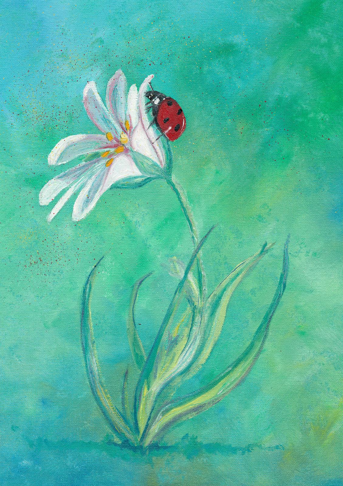 Daisy Lady Bug