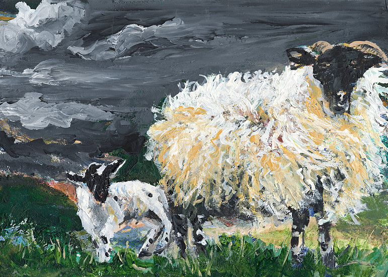 Windy Sheep