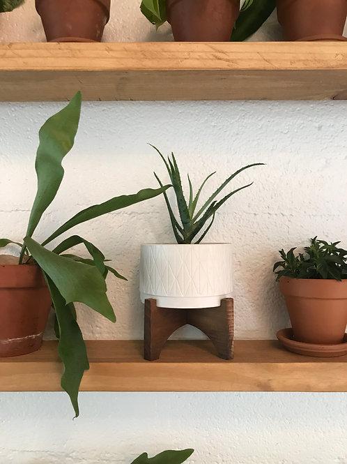 Matte Ceramic Planter