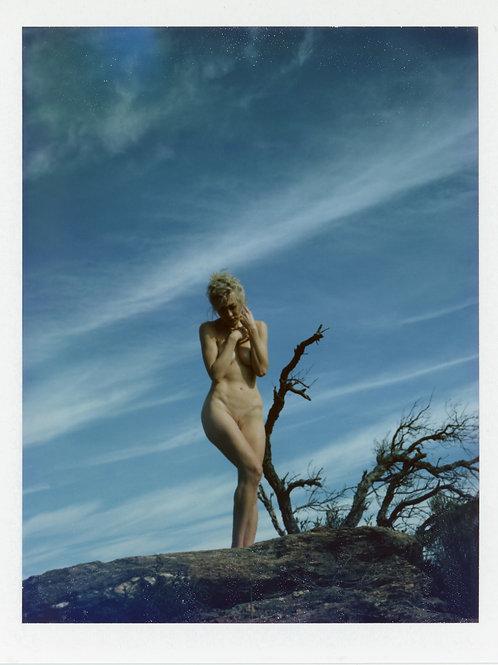 Fujifilm 100c Silk Polaroid Nude Art