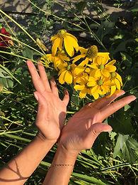 Spring Equinox Yin & Meditation
