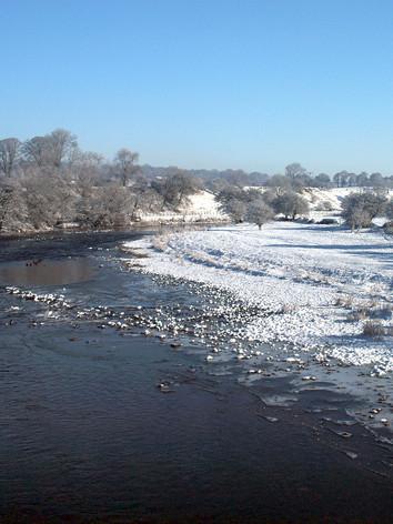 West Bradford-River Ribble (DSC_0227).jp