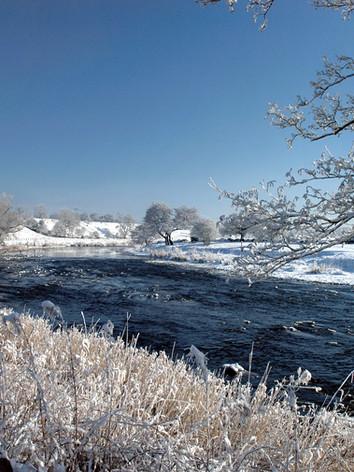 West Bradford-River Ribble (DSC_0222).jp