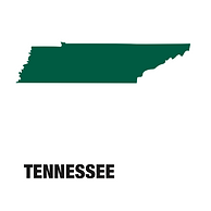 CBD Oil Tennessee