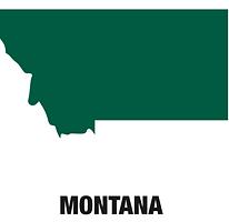 CBD Oil Montana