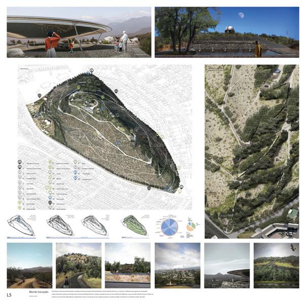 Monte trenzado_CERRO CALAN_Láminas jpg_P