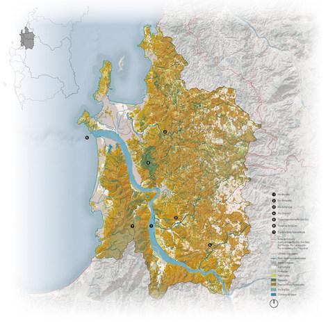 Concepción Regional.jpg
