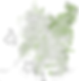 Cobertura Arborea.png