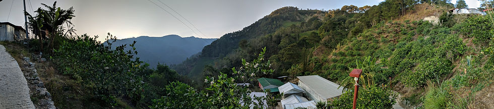 Photo of a rural coffee farm in Atok, Philippines during a site visit for the Asia Pacific Foundation of Canada APEC-Canada research