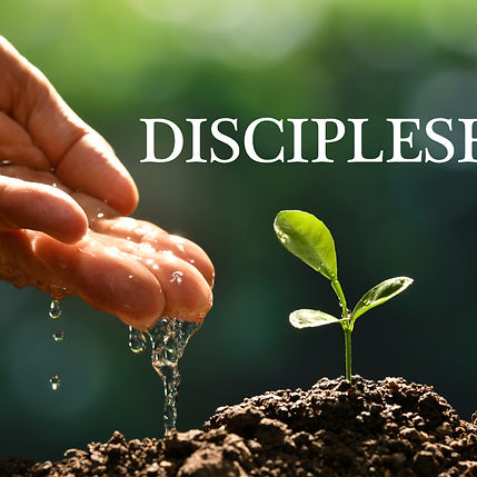 Discipleship website.jpg