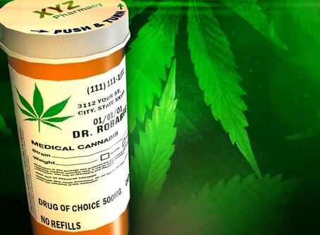 Estudio demuestra que el cannabis puede matar células cancerígenas