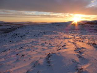 Dawn in Assynt