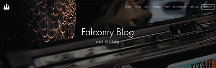 Falconry Told Blog.jpg