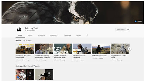 Falconry Told Videos.jpg