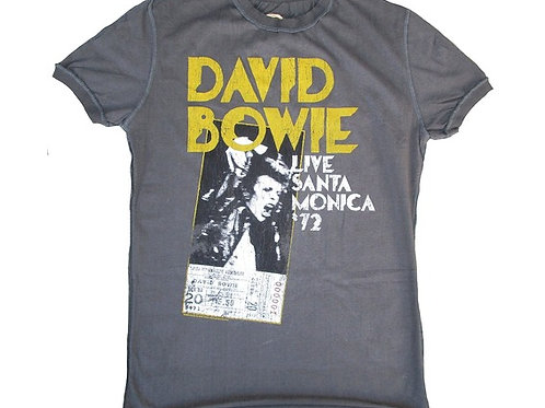 David Bowie Live Santa Monica