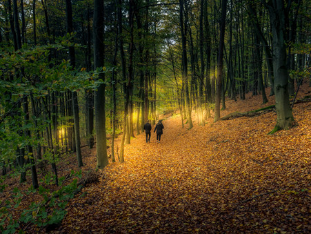 Foto des Tages - Alone Together