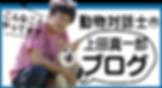 ブログバナー2.png