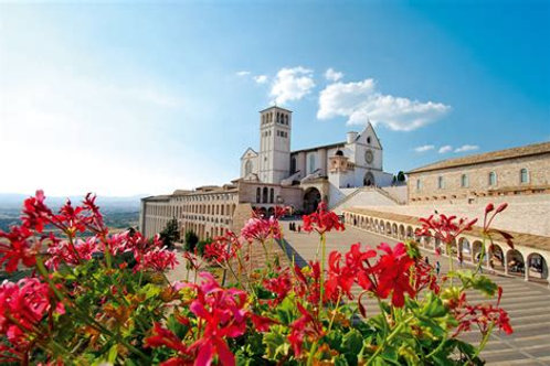 """Discover Italy"" Single Accommodations Balance"