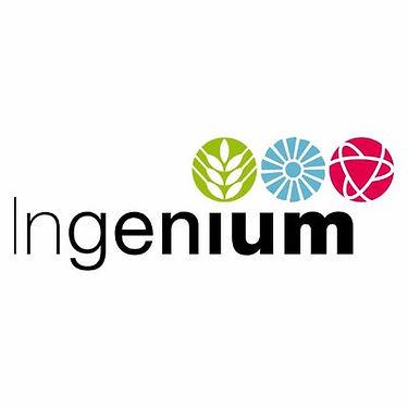 Ingenium Logo.jpg