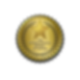 TIRB -- BGS -- GOLD  badge.png