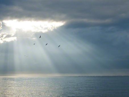 A Light To Inspire