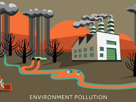 Ecologia Industriale