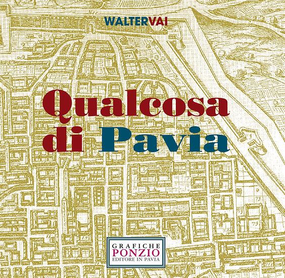 Qualcosa di Pavia
