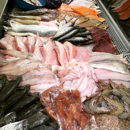 Hollowshore Fisheries