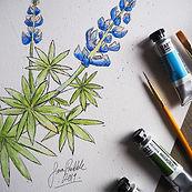 Botanicals 2 (SM).jpg