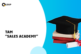 TAM for Sales Academy.png