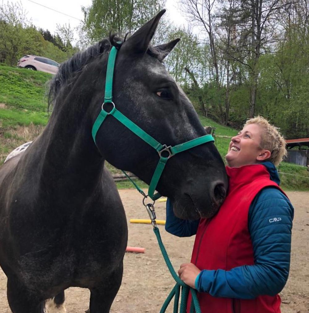 Pferd Nicole M. Mayer