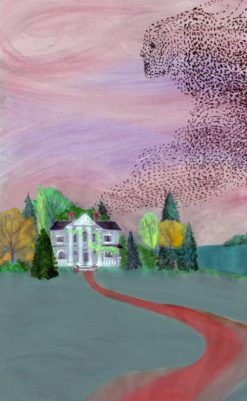 emily new moon house murmuration final b
