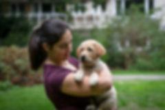 Hondenfotografie - Hondenfotograaf